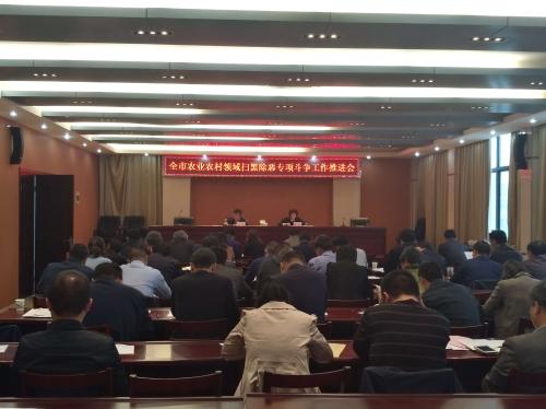 靖江市农业农村局召开扫黑除恶专项斗争工作